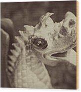 A Dragon's Tale - Series 2 Wood Print