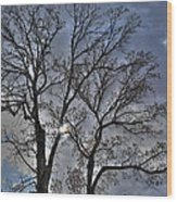 A Fall Sky Wood Print