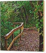A Fall Walk Wood Print