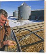 A Farmer Runs His Corn Through His Hand Wood Print by Joel Sartore