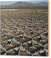 A Field Of Military Planes Wood Print