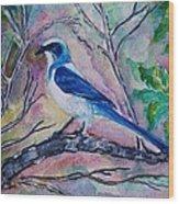 A Fine Feathered Friend Wood Print