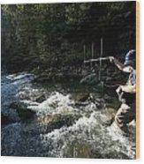 A Fisheries Technician Uses An Antenna Wood Print