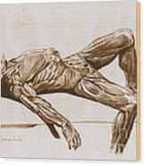 A Flayed Cadaver Wood Print
