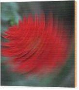 A Flower Spinning In A Tornado Like Effect Wood Print