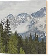 A Forest And The Rocky Mountains Wood Print