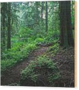 A Forest Green Wood Print