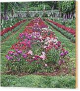 A Formal Garden Wood Print
