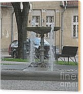 A Fountain In Silute Lithuania Wood Print