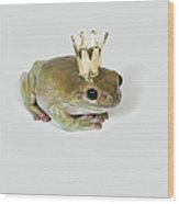 A Frog Wearing A Crown, Studio Shot Wood Print