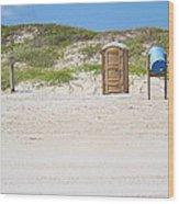 A Full Service Beach Wood Print