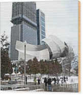 A Gehry Winter Wood Print