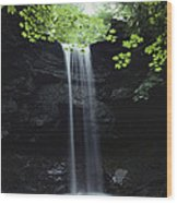 A Gentle Woodland Waterfall With Maple Wood Print
