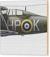 A Gloster Gladiator Mk II Wood Print by Chris Sandham-Bailey