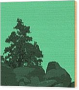 A Green Day For A Pinon Wood Print