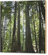 A Green World Wood Print