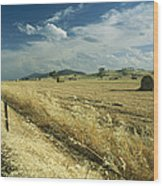 A Hay Field With Bales Sitting Wood Print