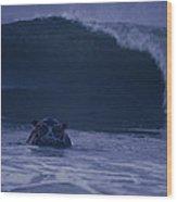 A Hippopotamus Surfs The Waves Wood Print
