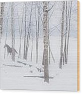 A Horse Stands Beside A Forest Of Bare Wood Print