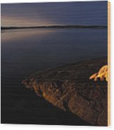 A Husky Reclines On The Shore Wood Print by Nick Norman