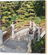 A Japanese Garden Bridge From Sun To Shade Wood Print