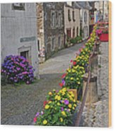 A Line Of Flowers In A French Village Wood Print