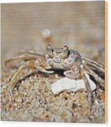 A Little Crabby Wood Print