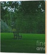 A Lonely Autumn Bench  Wood Print