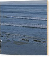 A Longboard Surfer Watches The Surf Wood Print by Rich Reid