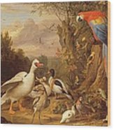 A Macaw - Ducks - Parrots And Other Birds In A Landscape Wood Print