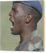 A Member Of The U.s. Air Force Academy Wood Print by Stocktrek Images