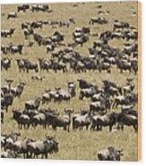 A Migrating Herd Of Wildebeests Wood Print