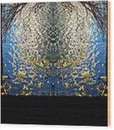 A Mirror Image Of Sparkling Water Reflection Wood Print
