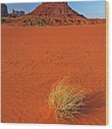 A Monument Valley View Wood Print