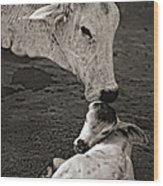 A Mother's Love Monochrome Wood Print