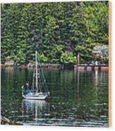 A Nice Day For A Sail Wood Print