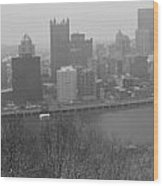 A Pittsburgh Winter Day Wood Print by David Bearden