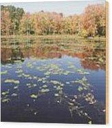 A Pond Of Reflective Beauty Wood Print
