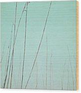 A Quiet Breath Wood Print