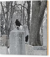 A Quiet Winter Day At The Graveyard Wood Print