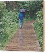 A Rainey Day In Alaska Wood Print