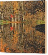 A Reflection Of October Wood Print