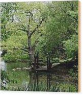 A River Runs Through Central Park  Wood Print