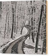 A Road Running Through Snow-covered Wood Print