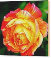A Rose Wood Print by Jose Lopez