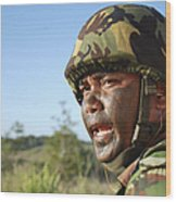 A Royal Brunei Land Force Soldier Wood Print by Stocktrek Images