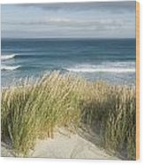 A Scenic Hillside Of The Beach Wood Print by Bill Hatcher