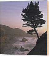 A Scenic View Of The Oregon Coast Wood Print