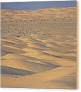 A Sea Of Dunes In The Sahara Desert Wood Print by Stephen Sharnoff