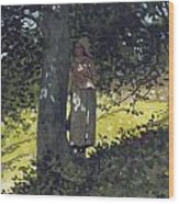 A Shady Spot Wood Print by Winslow Homer